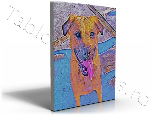 Pop Art Dog 2