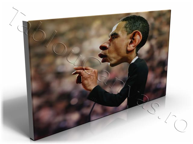 Barack Obama Profile